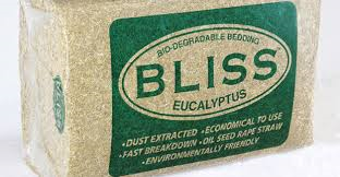 Bliss Eucalyptus